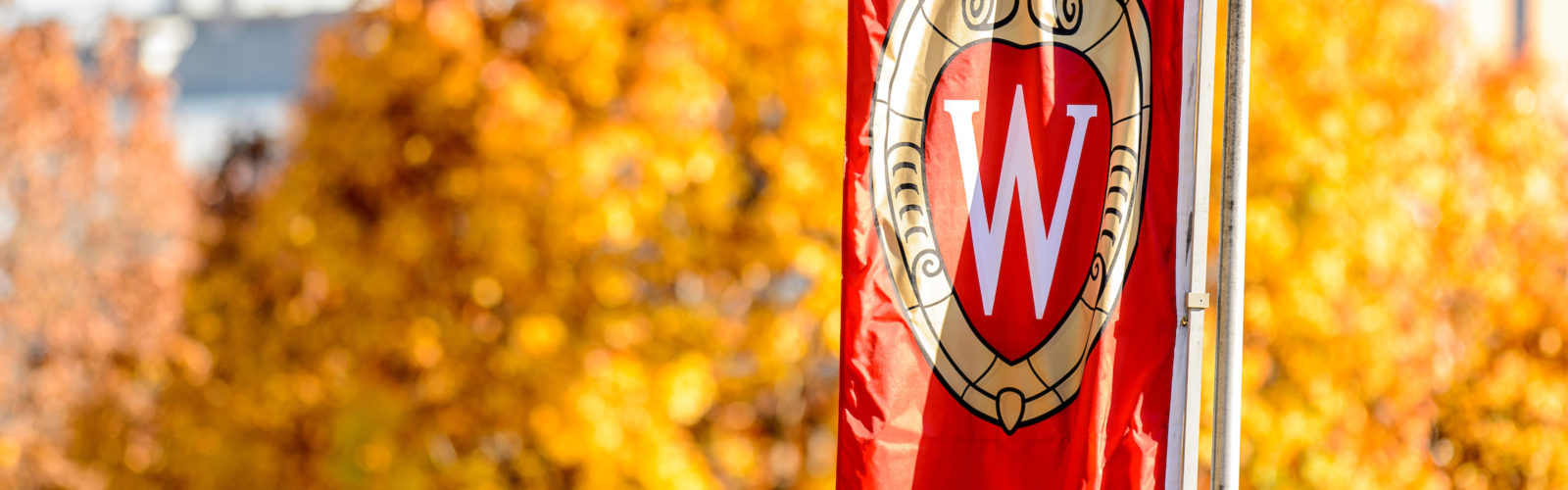 a UW banner in the fall